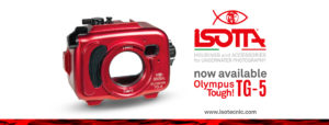 Isotta TG5 Housing now in stock